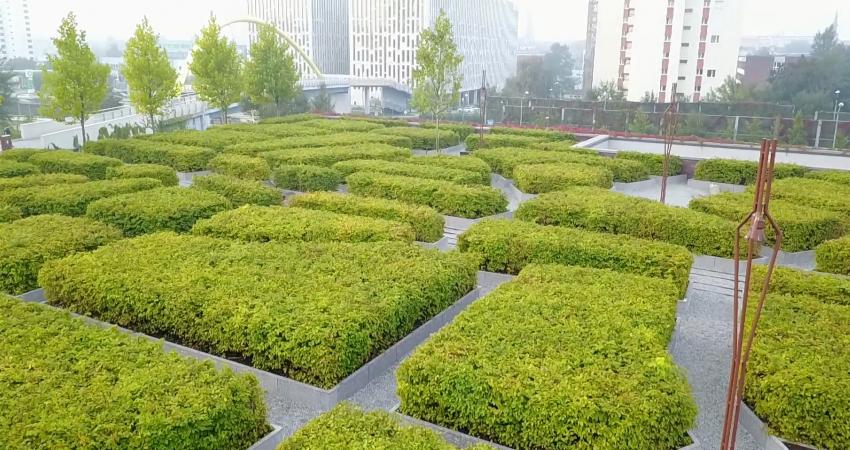 Ujęcie z pułapu 4, 5 metrów na zielony ogród obok siedziby NOSPR w Katowicach, źródło: praca własna, wszelkie prawa zastrzeżone